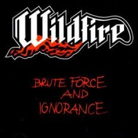 wildfirebruteforcecd300